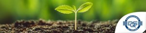 Produkt ekologiczny, przyjazny środowisku czy po prostu zrównoważony? Do której kategorii można zaliczyć łożyska liniowe drylin®?